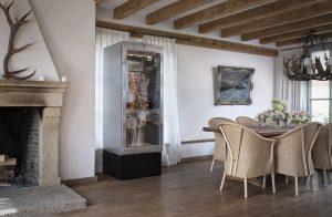 DX1000 - living room